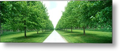Avenue At Chateau De Modave Ardennes Metal Print