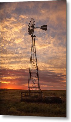 Awaiting Morning Metal Print by Shirley Heier