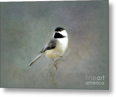 Metal Print featuring the photograph Awaiting Spring by Brenda Bostic