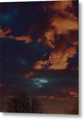 Awakened Metal Print by Tim Good