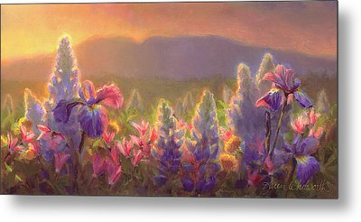 Awakening - Mt Susitna Spring - Sleeping Lady Metal Print by Karen Whitworth