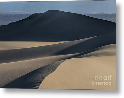 Awakening  Metal Print by Sandra Bronstein