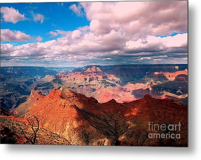 Awesome View Metal Print by Kathleen Struckle