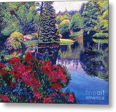 Azaleas In Spring Metal Print by David Lloyd Glover