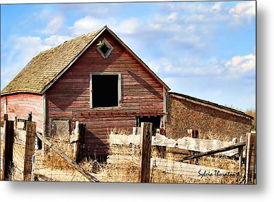 Metal Print featuring the photograph Baby Barn by Sylvia Thornton