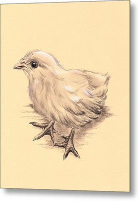 Baby Chicken Metal Print by MM Anderson