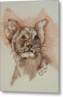 Baby Lion Metal Print by Deborah Gorga