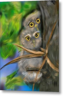 Baby Owls Metal Print by Christine Fournier