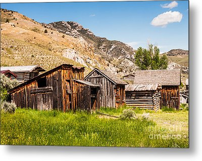 Bachelors Row Metal Print by Sue Smith