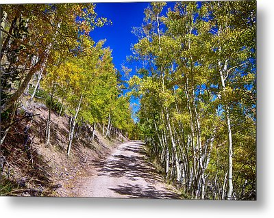 Back Country Road Take Me Home Colorado Metal Print by James BO  Insogna