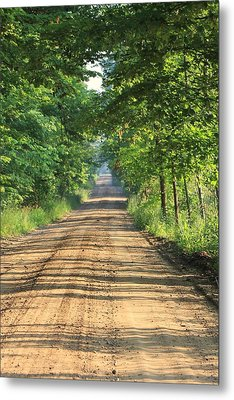 Back Road Morning Metal Print by Sarah Boyd
