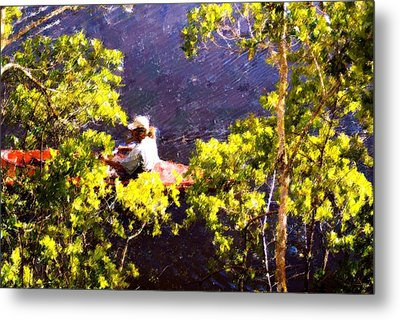 Back To Nature Metal Print by Florene Welebny