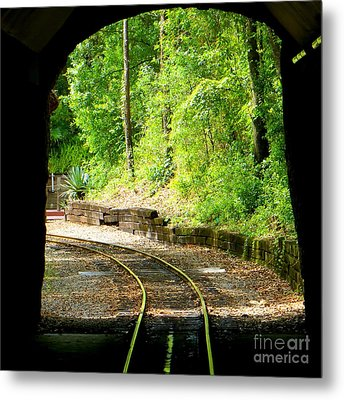 Metal Print featuring the photograph Back Tracking by Joy Hardee