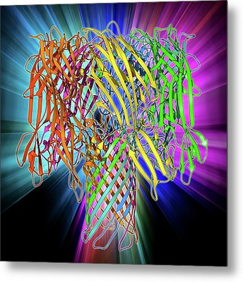 Bacterial Alpha-hemolysin Toxin Metal Print