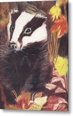 Badger In The Fall. Metal Print
