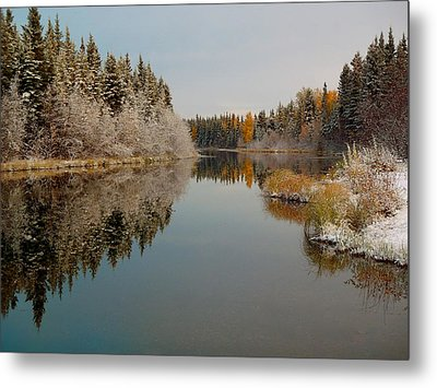 Badger Slough On A Frosty Morning Metal Print