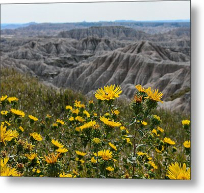Badlands Flowers Metal Print by Robin Williams