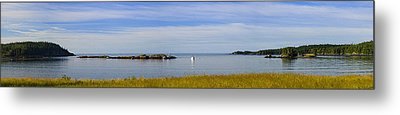 Bailey's Mistake Panorama Metal Print by Marty Saccone