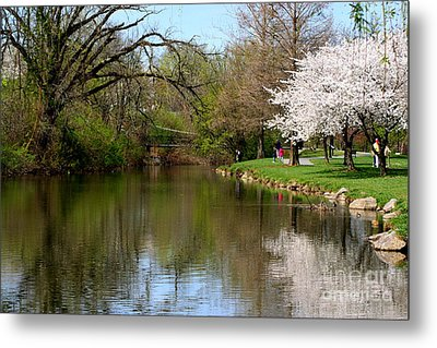 Baker Park Metal Print by Patti Whitten