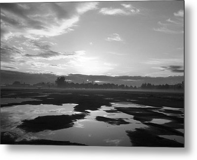 Metal Print featuring the photograph Bakersfield In Black And White by Meghan at FireBonnet Art