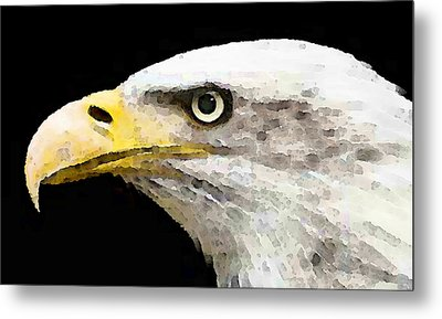 Bald Eagle By Sharon Cummings Metal Print by William Patrick