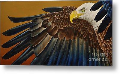 Bald Eagle Metal Print by Jurek Zamoyski