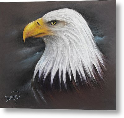 Bald Eagle Metal Print by Patricia Lintner