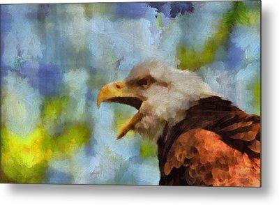 Bald Eagle Portrait Metal Print by Dan Sproul