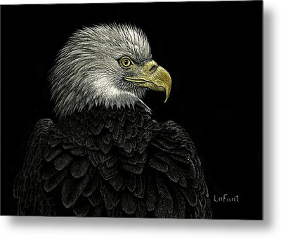 American Bald Eagle Metal Print by Sandra LaFaut