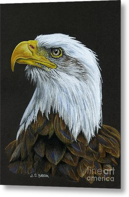 Bald Eagle Metal Print by Sarah Batalka