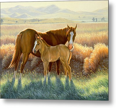 Bald-faced Sorrel And Colt Metal Print by Paul Krapf