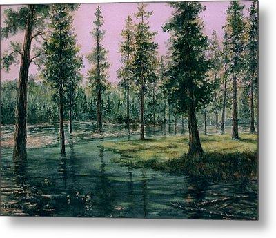 Balm Creek Reflections Metal Print