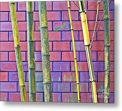 Metal Print featuring the photograph Bamboo And Brick by Ethna Gillespie