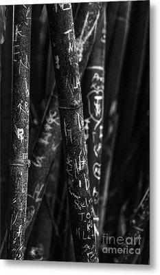 Bamboo Destruction Metal Print