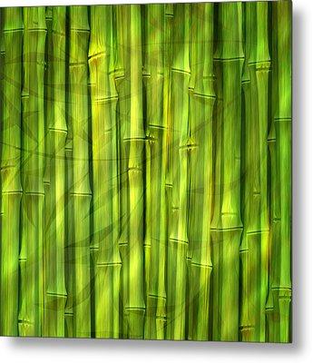 Bamboo Dream Metal Print by Lutz Baar