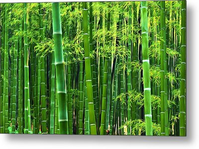 Bamboo Forest 8 Metal Print