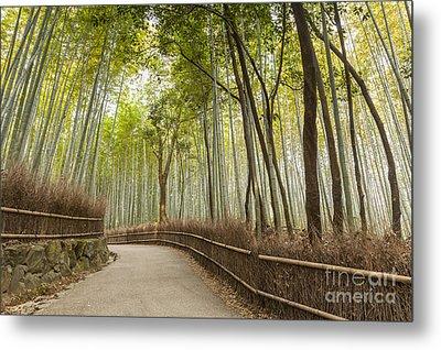 Bamboo Forest Arashiyama Kyoto Japan Metal Print