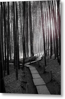 Bamboo Grove At Dusk Metal Print by Larry Knipfing