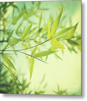 Bamboo In The Sun Metal Print