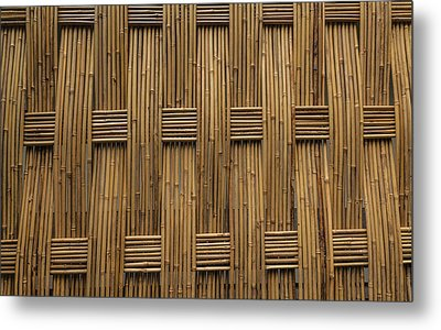 Metal Print featuring the photograph Bamboo by Jacqui Boonstra