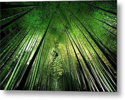 Bamboo Night Metal Print
