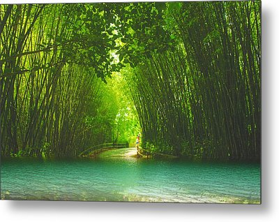 bamboo path to  Blue Lagoon  Metal Print by Dennis Baswell