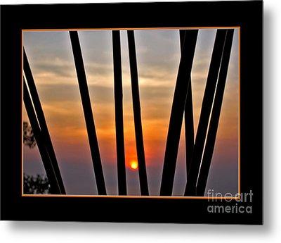 Bamboo Sunset - Black Frame Metal Print by Kaye Menner