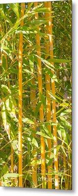 Bamboo Vertical Metal Print