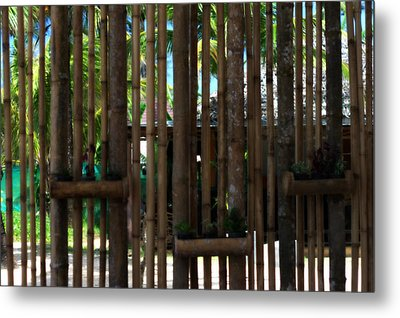 Bamboo View Metal Print by Georgia Fowler