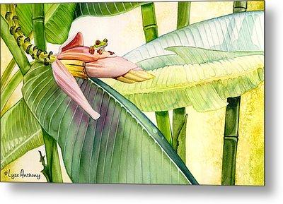 Banana Bloom Metal Print by Lyse Anthony
