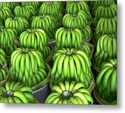 Banana Bunch Gathering Metal Print
