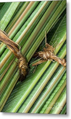 Banana Leaves Metal Print by Rick Piper Photography