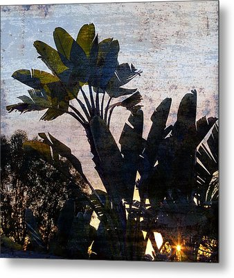 Banana Palms Metal Print