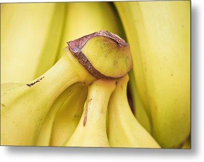 Bananas Metal Print by Tom Gowanlock